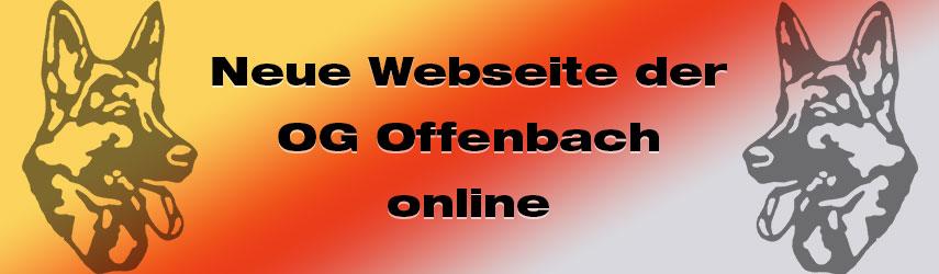 news neue webseite